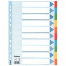 Regiszter, karton, A4, 10 részes, írható előlappal, ESSELTE Standard, színes (E100193)