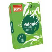 Másolópapír, színes, A4, 80 g, REY Adagio, intenzív zöld (LIPAD48IZ)