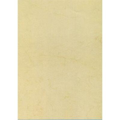 Előnyomott papír, A4, 90 g, APLI, havanna (LCA11959U)