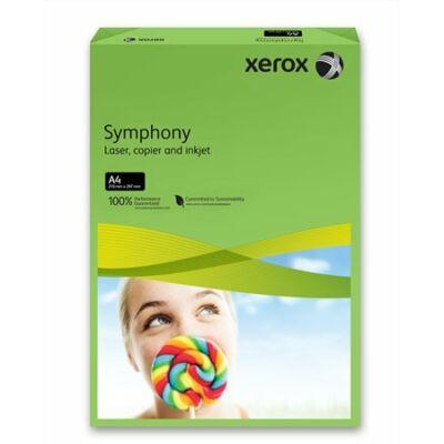 Másolópapír, színes, A4, 160 g, XEROX Symphony, sötétzöld (intenzív) (LX94279)