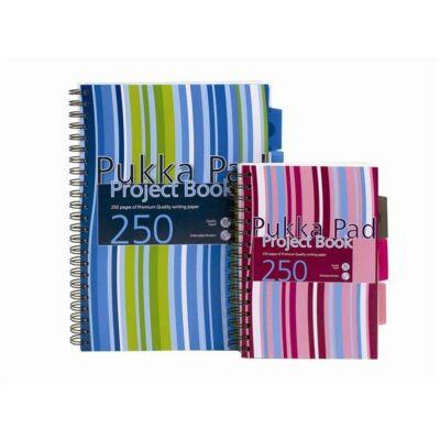 Spirálfüzet, A4, vonalas, 125 lap, PUKKA PAD Stripe project book (PUPBA4)