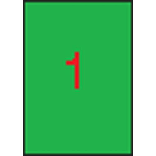 Etikett, 210x297 mm, színes, APLI, neon zöld, 100 etikett/csomag (LCA11750)